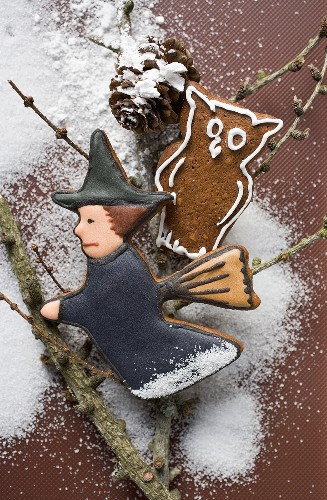 Gingerbread witch and owl