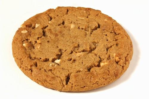 A Single Peanut Butter Cookie on White