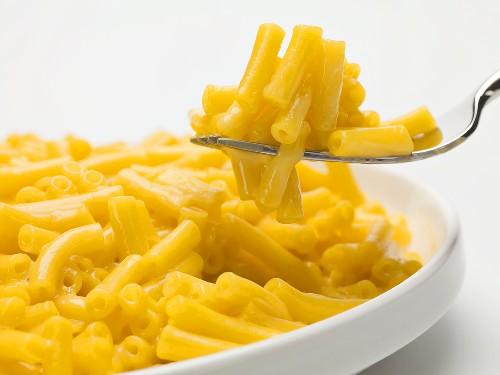 Eine Gabel voll Maccheroni and cheese