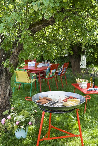 Gas barbecue and table and chairs under a tree