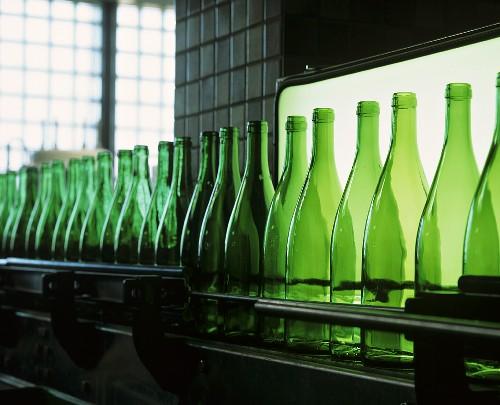 Empty wine bottles in a bottling plant