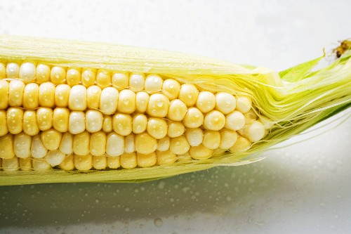 The tip of a corn cob with husks and silk
