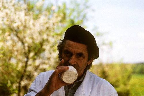 A French Man Sniffing a Cheese Wheel