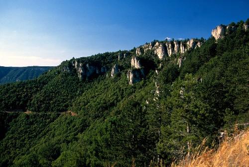 Weinlandschaft im Languedoc: Rocher des Verges