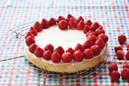 Strawberry cake being made: sponge base being topped with strawberries