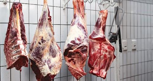 Rohes Fleisch hängt an Fleischerhaken im Kühlraum