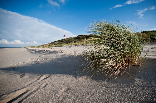 Beach and lighthouse on island of Sylt, Germany