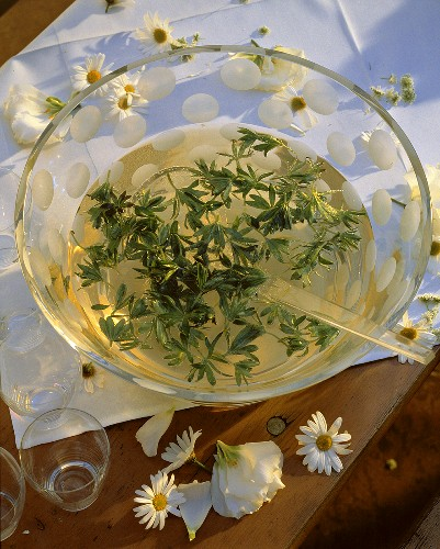 White Wine Punch with Woodruff Leaves