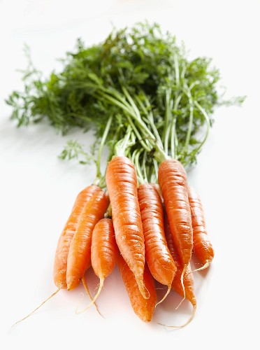 A bunch of carrots with no background