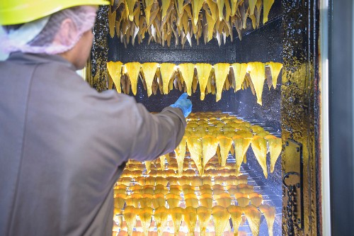 A worker smoking haddock fillets in the factory