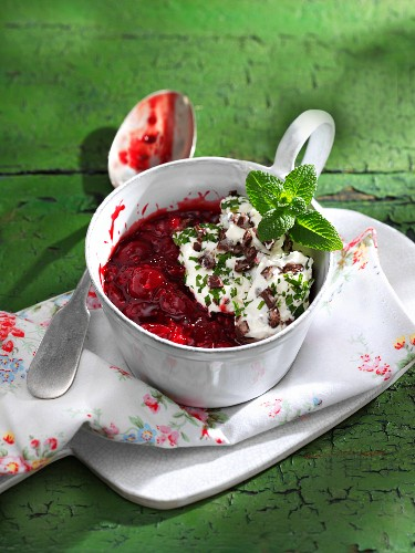 Red berry compote with chocolate and mint cream