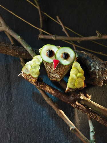 An owl made from wholemeal bread with cucumber