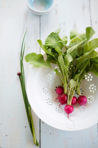 Radishes and chives