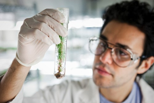 Middle Eastern scientist holding specimen in vial
