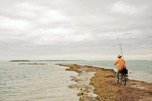 Man Riding Bicycle With Fishing Rods on Beach, Florida Keys, USA