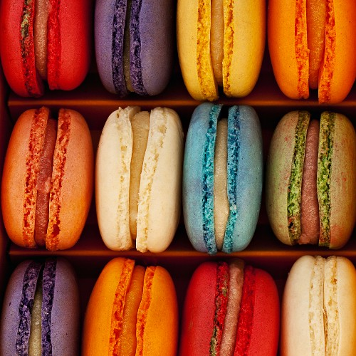 A box of multi coloured macaroons