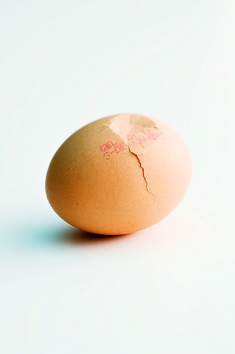 A cracked egg with a stamp of origin