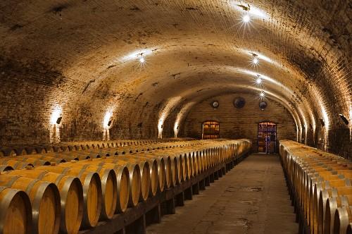 Eichenfässer im Weinkeller Vina Cousino Macul, Santiago, Maipo Valley, Chile