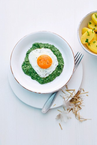 Creamy spinach with a fried egg and new potatoes