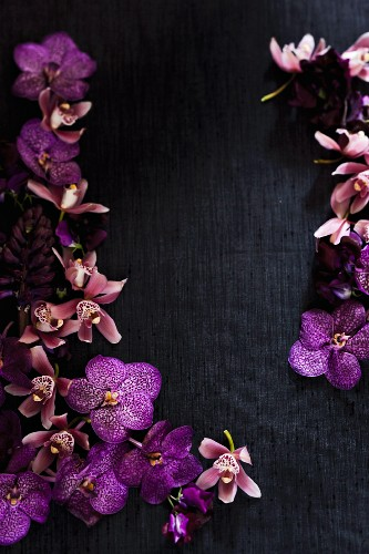 Purple orchids on black silk creating a frame