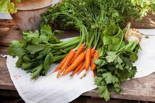 Verschiedenes Bio-Gemüse auf Leinentuch auf Holztisch: Staudensellerie, Möhren mit Grün, Spinat und Sellerieknolle mit Grün