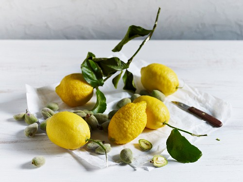 Lemons and green almonds