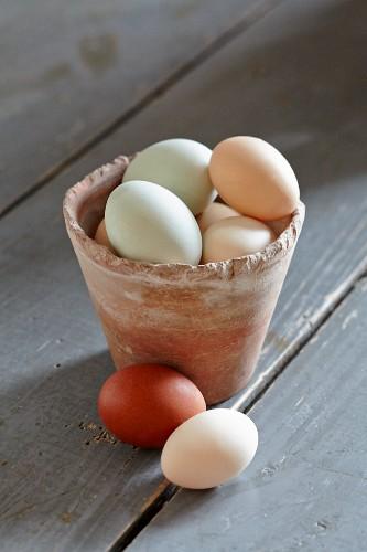 Organic farm-eggs in clay pot