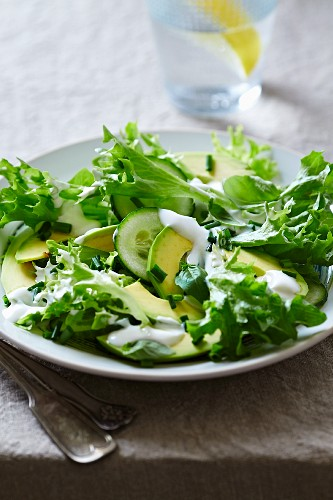 Avocado and endive salad with a yogurt and chive dressing