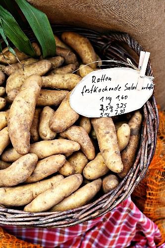 Französische Kartoffelsorte La Ratte im Korb auf dem Markt
