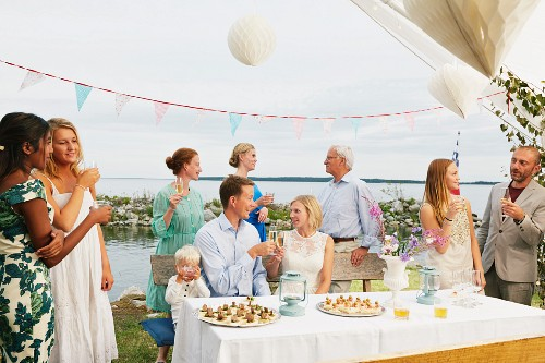 Couple making a toast with friends at wedding reception