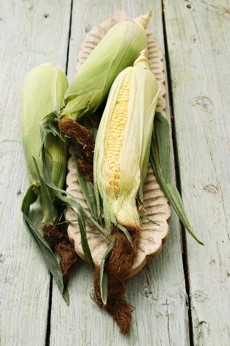 A corn cob in a wooden dish