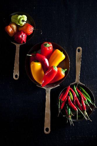 Verschiedene Chilischoten in Pfannen (Draufsicht)