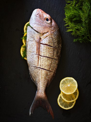 A red snapper on a black slate with lemon slices