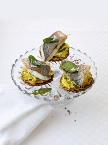Pumpernickel with gilthead seabream