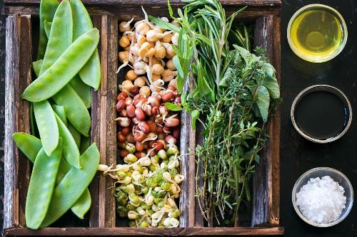 Bohnensprossen, Zuckerschoten und Kräuter in einer Holzkiste, daneben Olivenöl, Balsamico-Essig und Meersalz