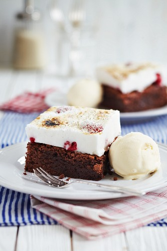 Chocolate cake with a layer of raspberry cheese cake served with vanilla ice cream