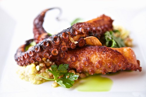 Grilled octopus on Sardinian pasta (Italy)