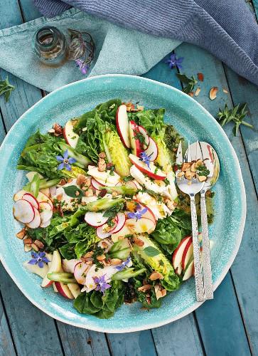 Romanasalat mit Hähnchen, Radieschen und Borretschblüten