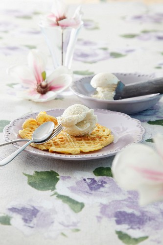 Quark waffles with ice cream