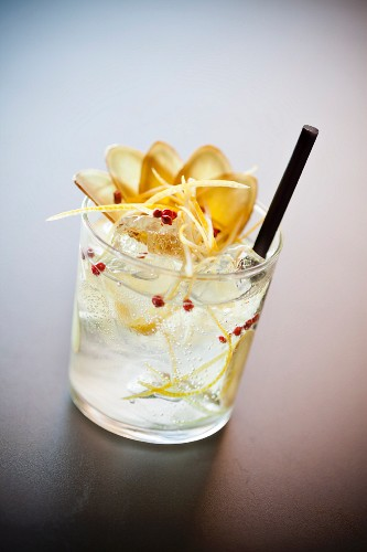 Gin& Tonic with ginger and lemon zest