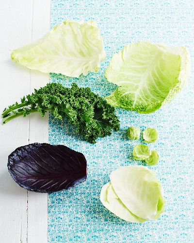Various cabbage leaves on a pastel blue surface