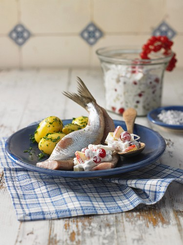 Soused herring fillets with sour cream and salted potatoes