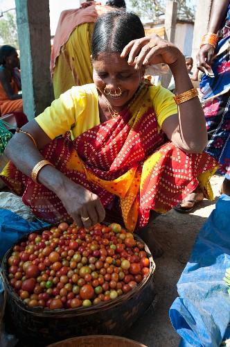 A Mali tribeswoman with gold nose-rings selling tomatoes at a weekly market at Guneipada, Koraput district, Orissa, India