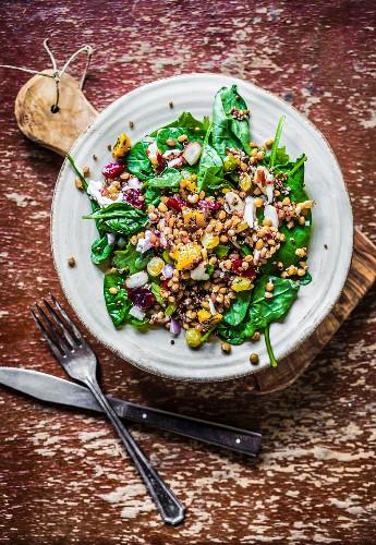 Spinatsalat mit Quinoa, Butternusskürbis, Paprika und Tomaten