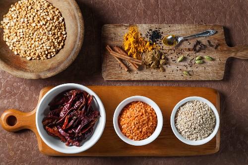 Verschiedene Zutaten für die indische Küche: Linsen, getrocknete Chilischoten, Kardamom, Kurkuma, Gewürznelken, Zwiebelsamen, Currypulver, Kümmel