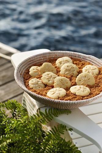 Sand dollar cookies (USA)