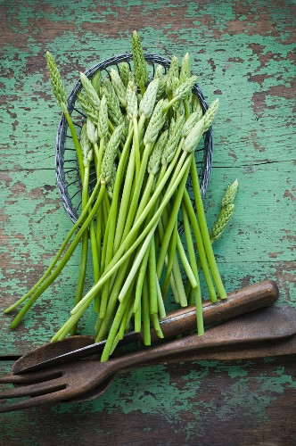 Wild asparagus in a basket on a rustic wooden table with salad servers
