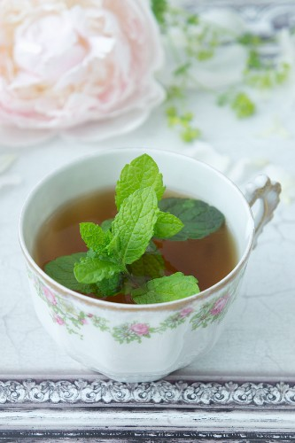 Spring herb tea with dried raspberry leaves
