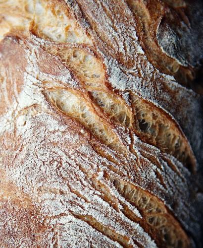 Crispy sour dough bread (close-up)