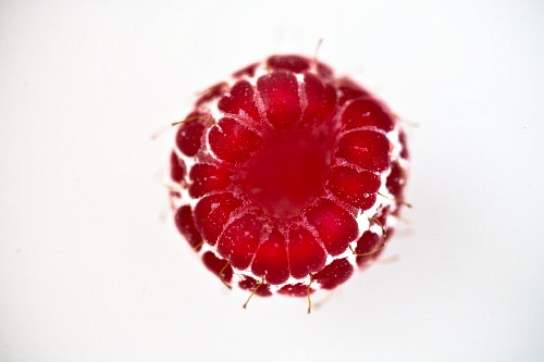 A raspberry (close-up, seen from above)
